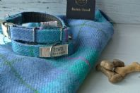 Turquoise Harris Tweed Dog Collar